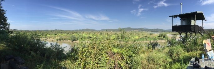 View of DMZ wilds during the cycling part of the DMZ tour